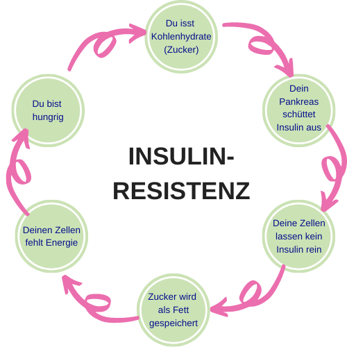 Teufelskreis Insulinresistenz